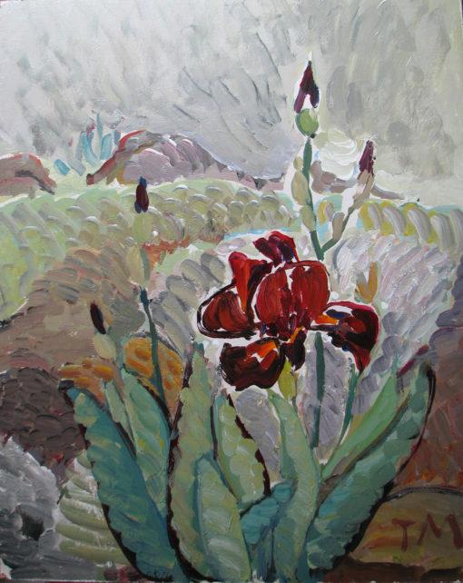 Rainy Irises 16''x20''  $850