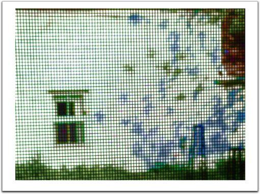 Hersh Jacob - Screened White Wall & Shadow Leaves A-P #1