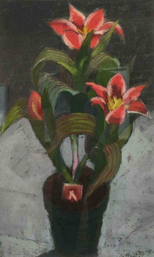 Margaret Hughes - Potted Plant